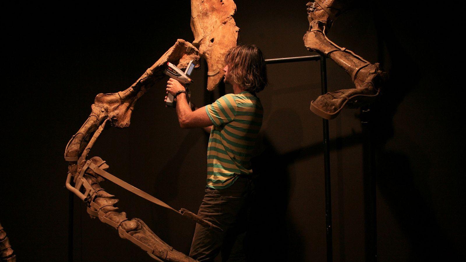 Phil Bell, paléontologue à l'université de la Nouvelle-Angleterre, en Australie, analyse au moyen d'un scanner à ...