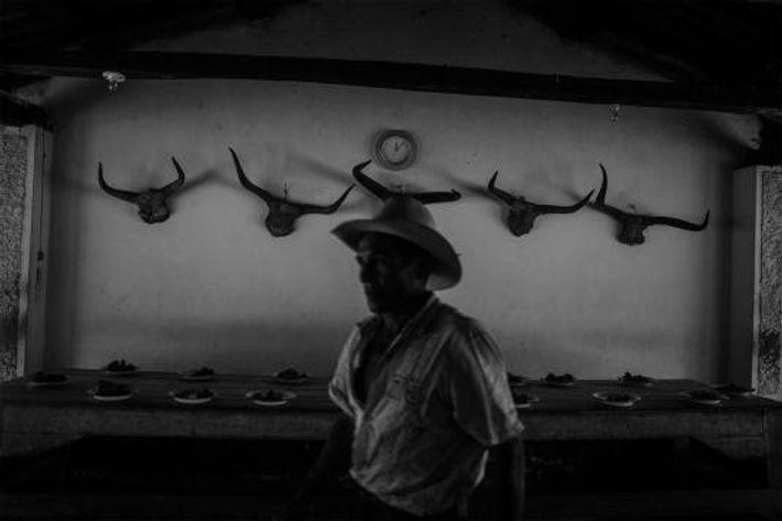 Un llanero dans la salle à manger d'un ranch. Les llaneros partent travailler tous les jours ...