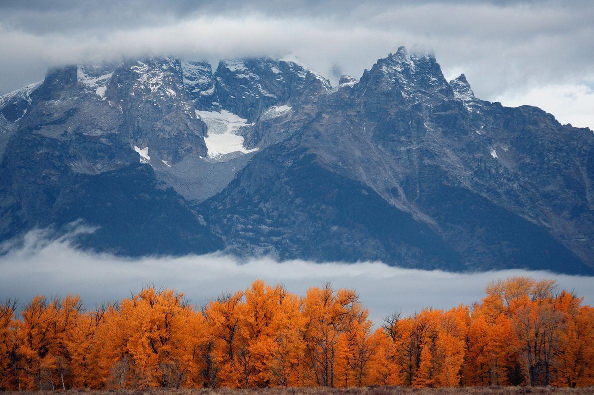 Avec ses forêts aux lueurs flamboyantes mêlant le jaune à l'orange sur fond de cimes enneigées, …