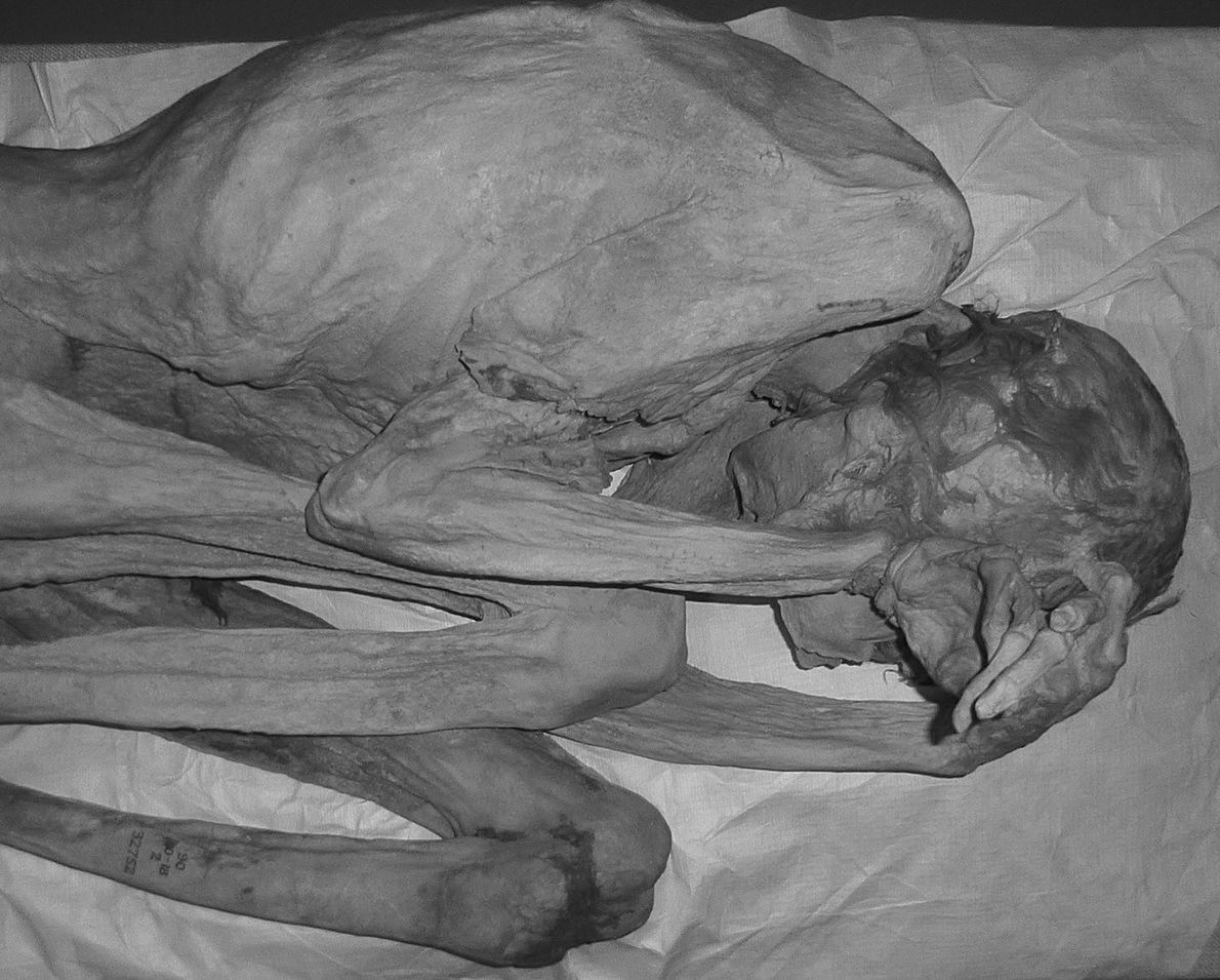 La femme de Gebelein a également été examinée à lumière infrarouge.