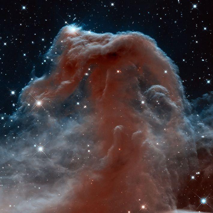 La nébuleuse de la Tête de Cheval, qui fait partie de la vaste et complexe nébuleuse ...