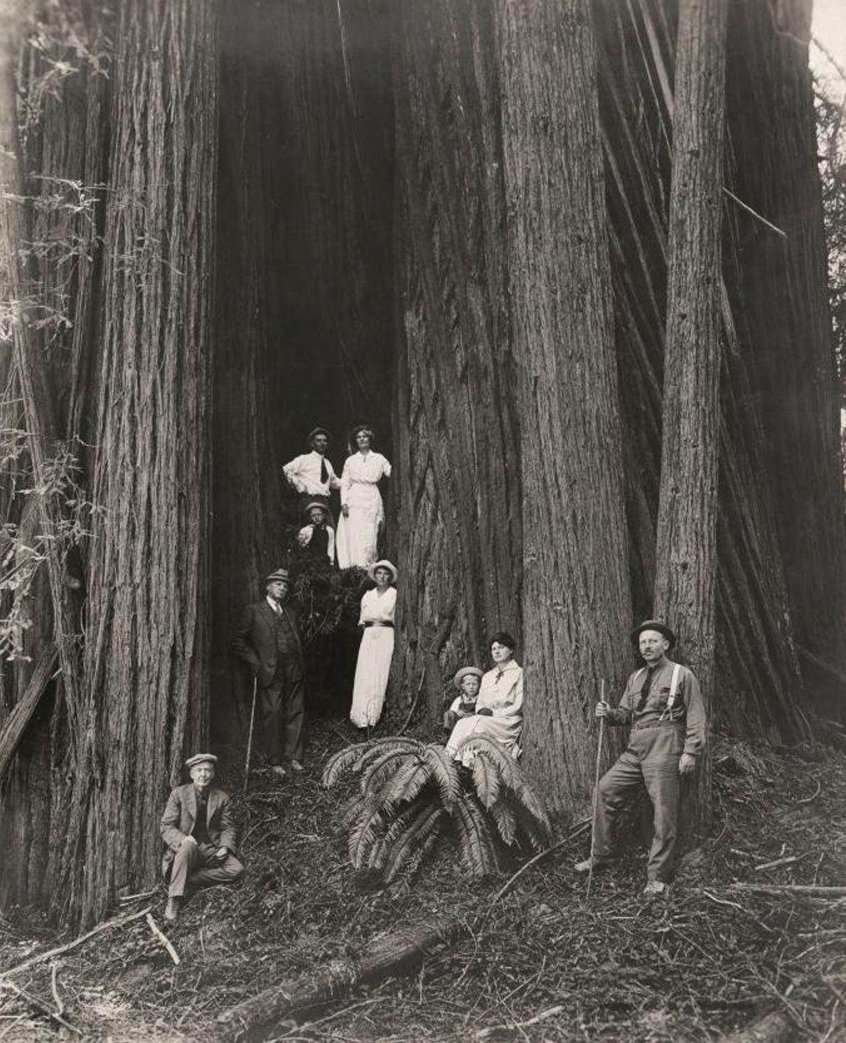 Des femmes, des hommes et des enfants posent devant des séquoias géants. Certaines femmes, désireuses de ...