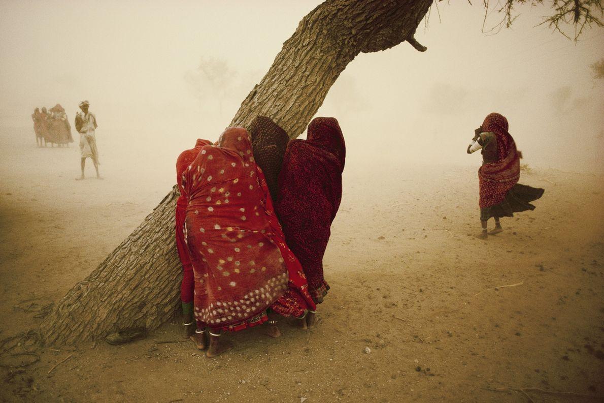 Des femmes s'abritent des vents forts derrière un arbre. La tempête précède la mousson au Rajasthan, ...