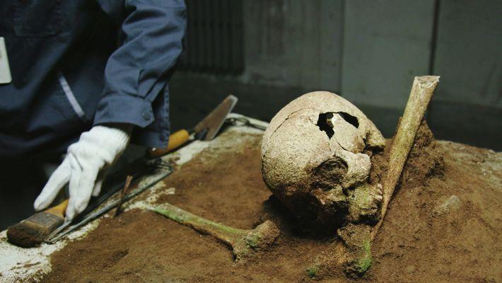 Ce crâne et ces os des jambes d'une jeune femme sont probablement les restes d'une concubine ...