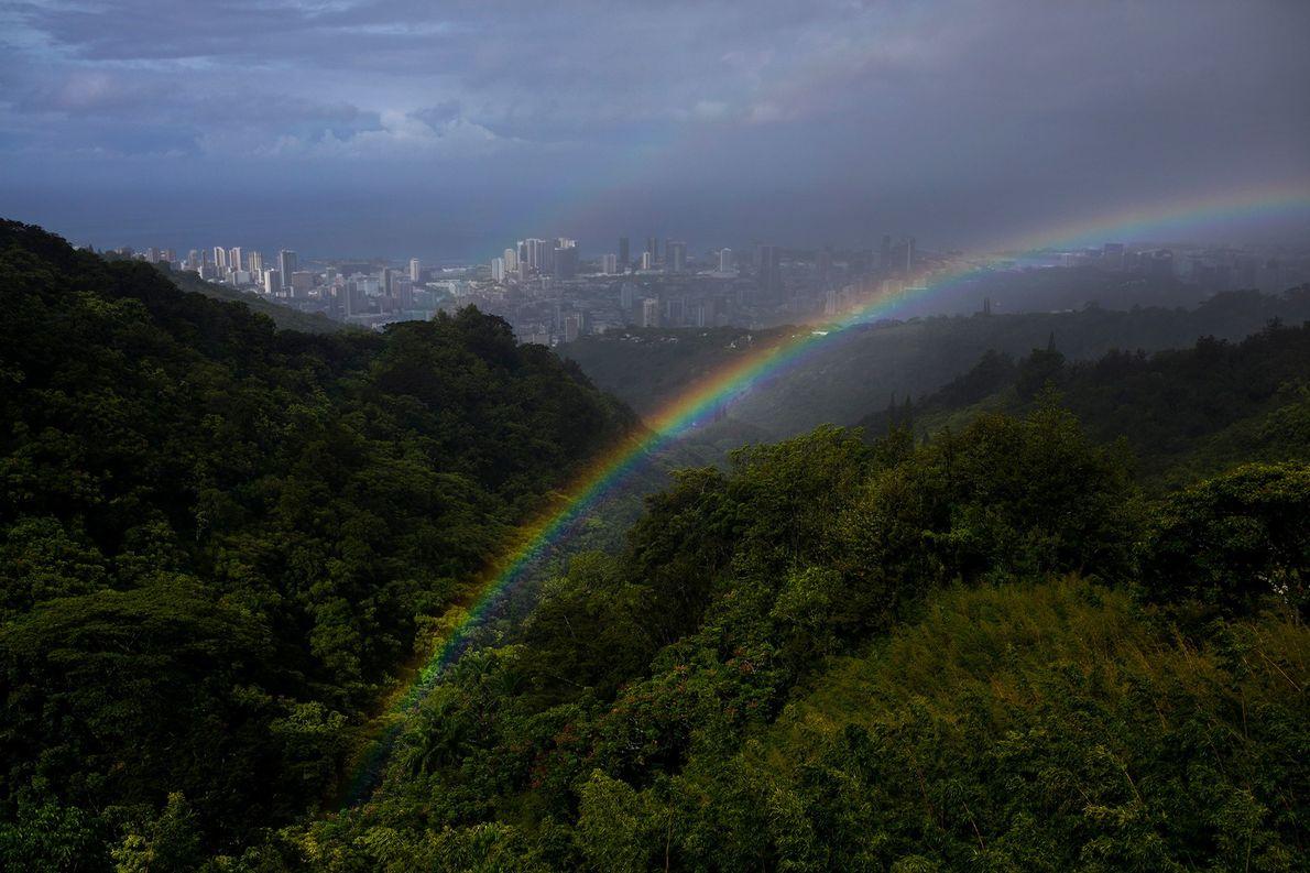 Après une rapide averse de pluie, un double arc-en-ciel encadre la vue d'Honolulu, depuis le sommet …