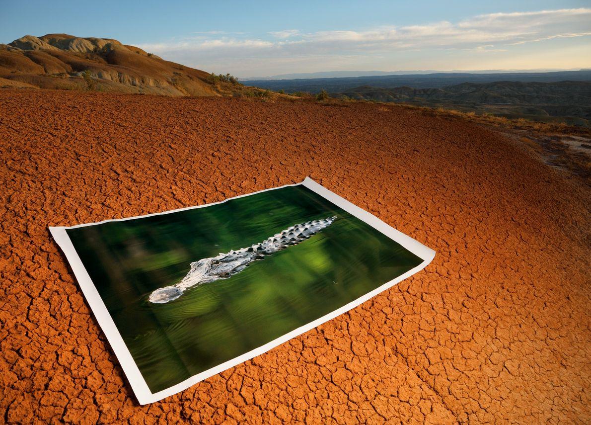 Aujourd'hui, dans l'aride Bighorn, des bandes de sol oxydé rouge rouille marquent le réchauffement soudain survenu ...