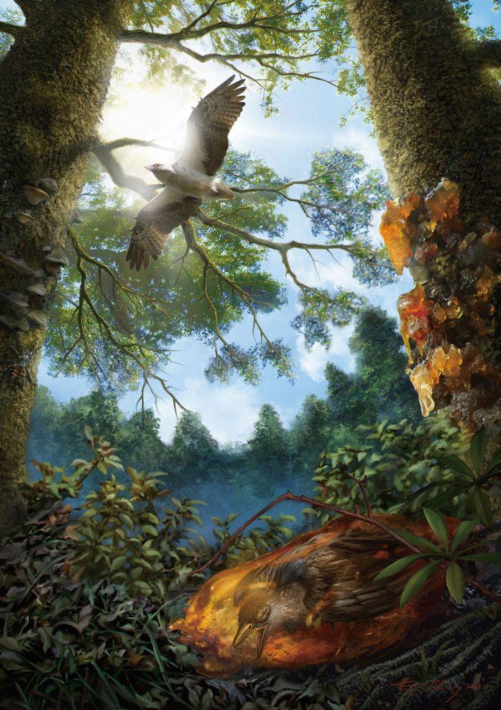Cette illustration représente le jeune oiseau du Crétacé pris au piège dans de la résine d'arbre, ...