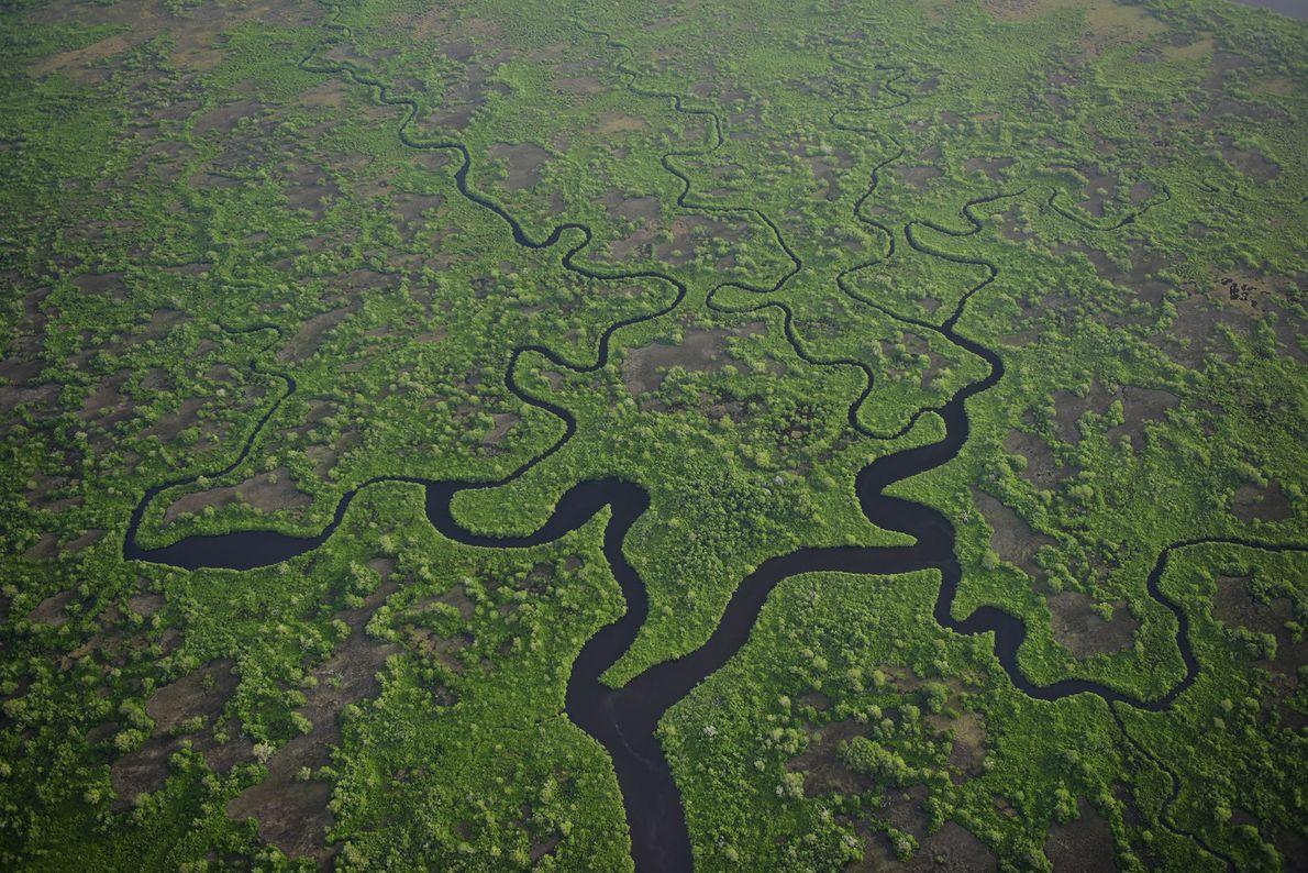 Les estuaires serpentent à travers le parc national des Everglades, en Floride, une contrée subtropicale sauvage …