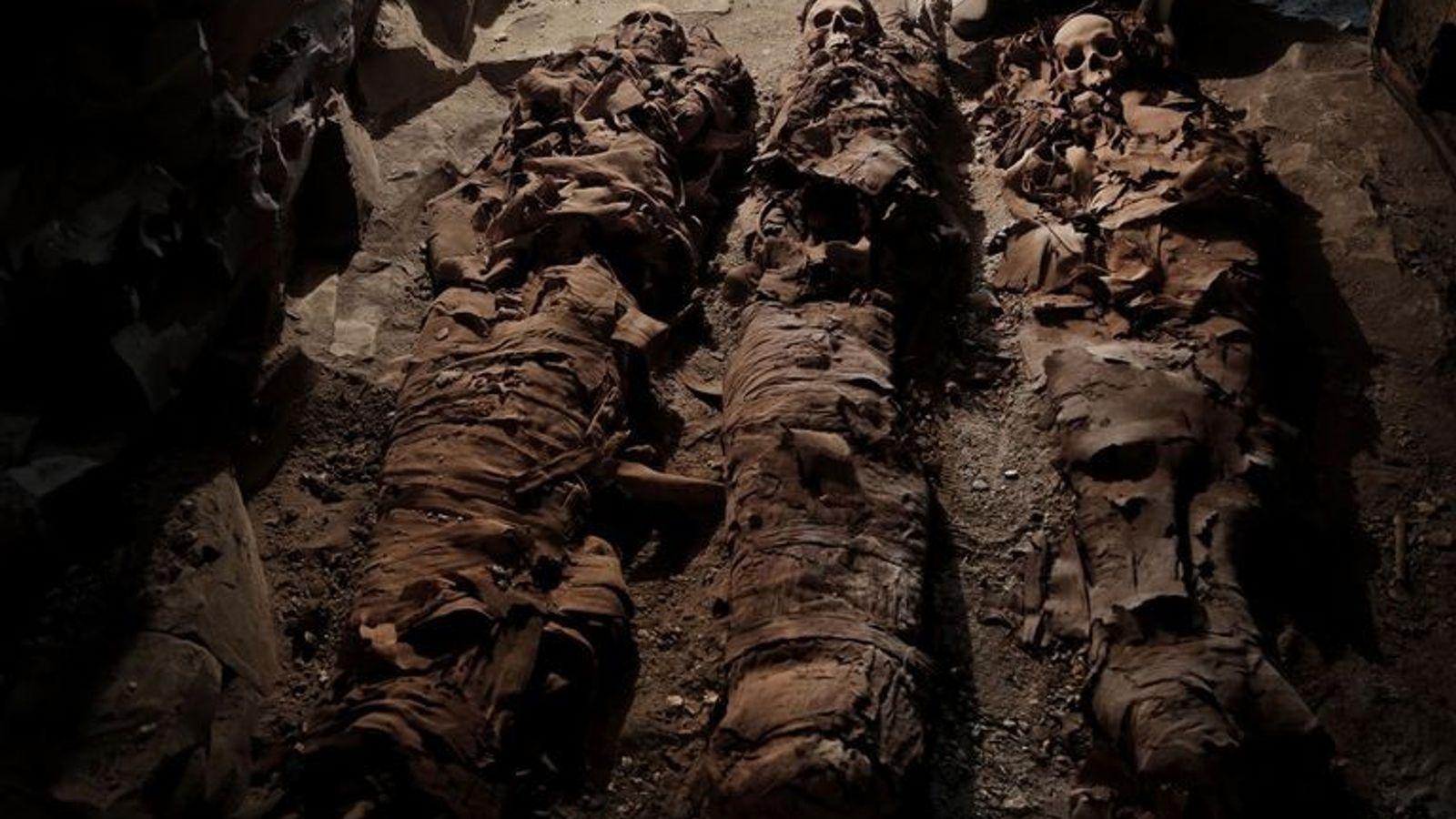 Trois momies reposent dans la tombe tout juste découverte près de Louxor.