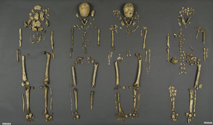 Des colons parmi les premiers d'Amérique identifiés