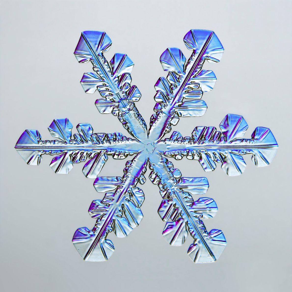 Les nombreuses facettes hexagonales de ce flocon de neige scintillent d'un mélange de mauve et de ...