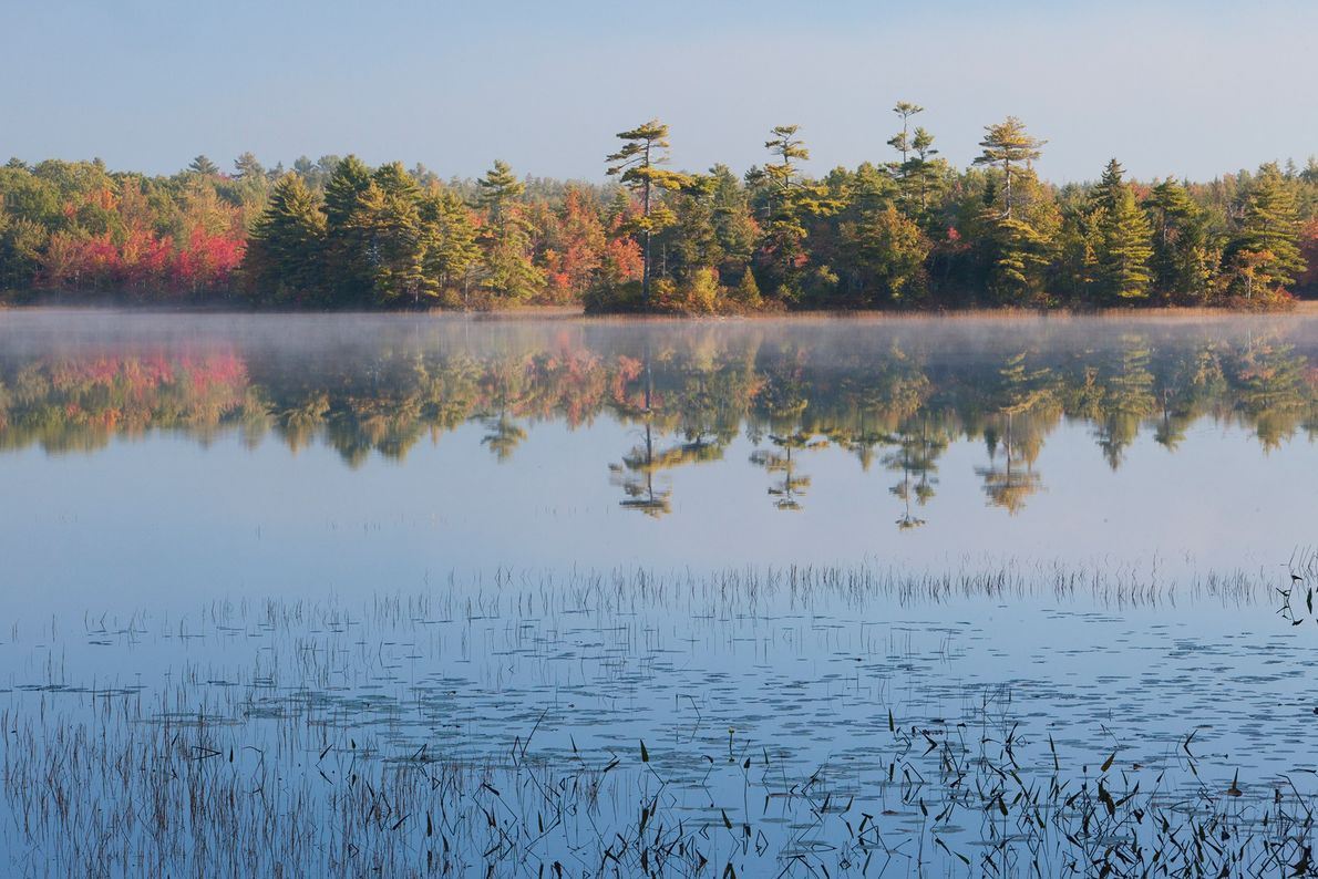 Parc national d'Acadia, Maine