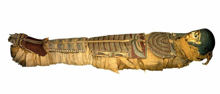 Tout grand musée archéologique européen qui se respectait devait posséder une collection de momies. Cette momie ...
