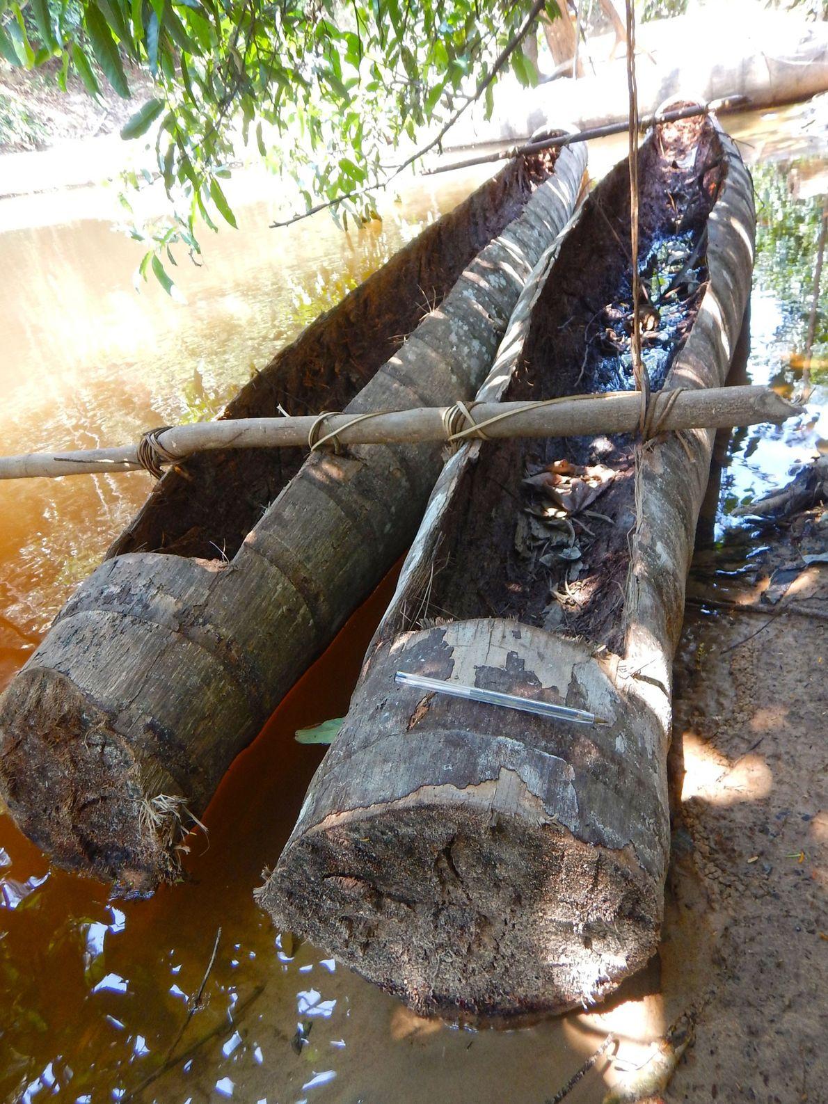 Deux canoës à l'apparence rudimentaire utilisés par les Flecheiros accostés sur la rive de la rivière ...