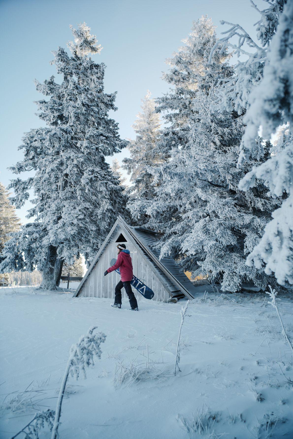 La snowboardeuse professionnelle Vesna Kajzer glisse sur la nature enneigée de Rogla à la recherche de ...