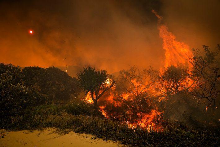 Un petit incendie se fraie un chemin à travers la broussaille sur la côte est de ...