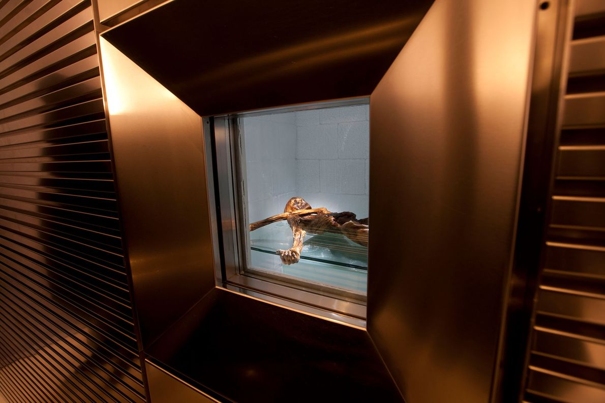 Ötzi et ses artefacts sont exposés au musée d'archéologie du Tyrol du Sud à Bolzano, en ...