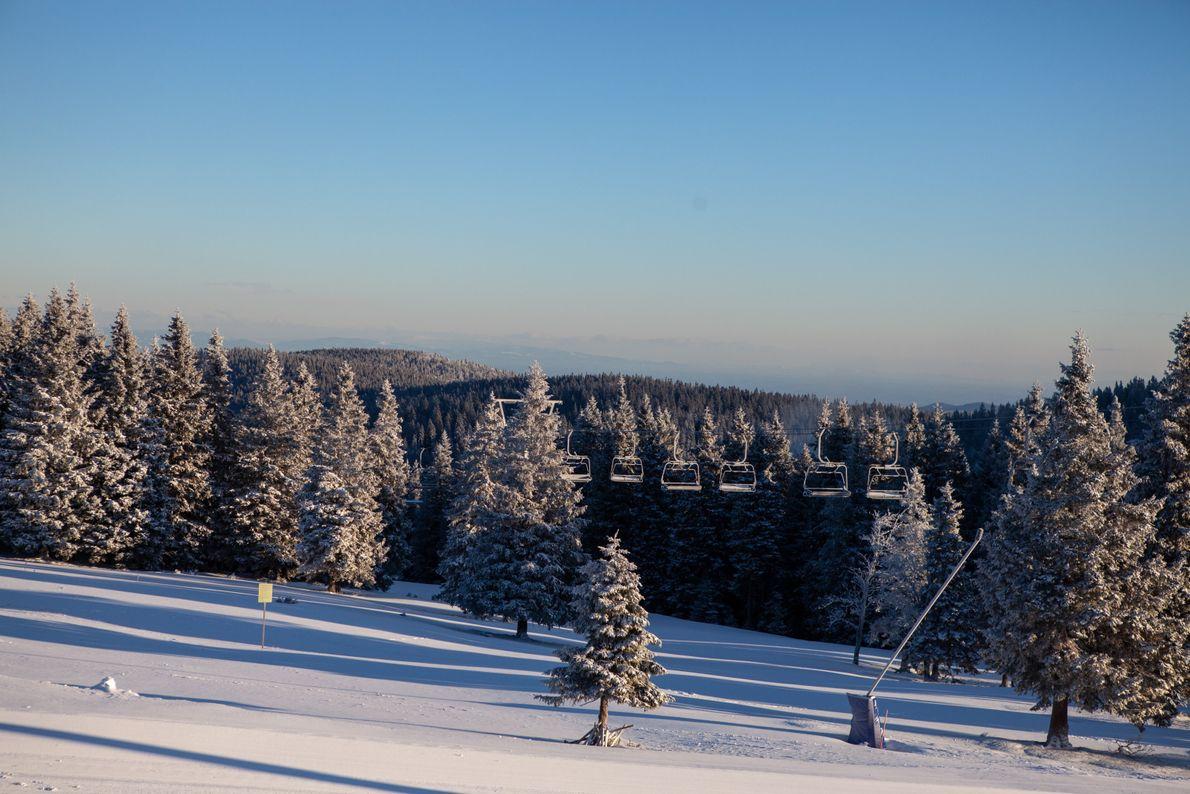 Le soleil matinal révèle les chutes de neige nocturnes dans la station de ski de Rogla.