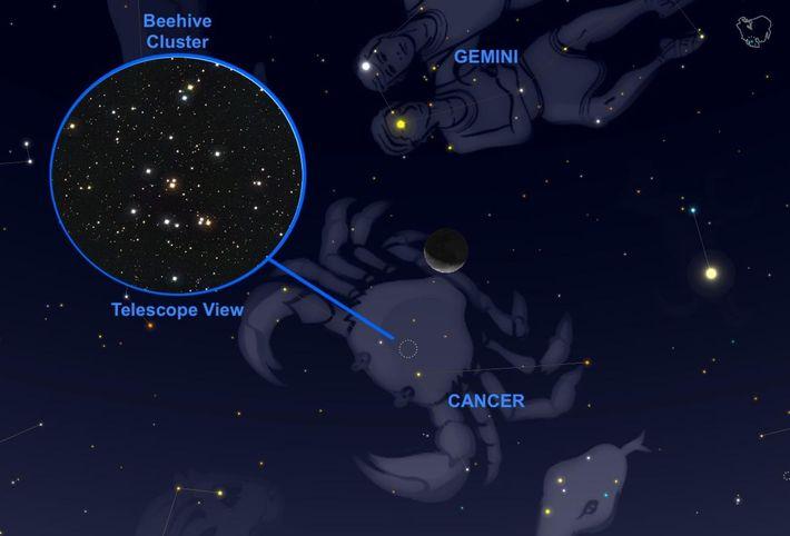 Le 24 septembre, un fin croissant de Lune ira effleurer l'amas stellaire de la Ruche situé ...