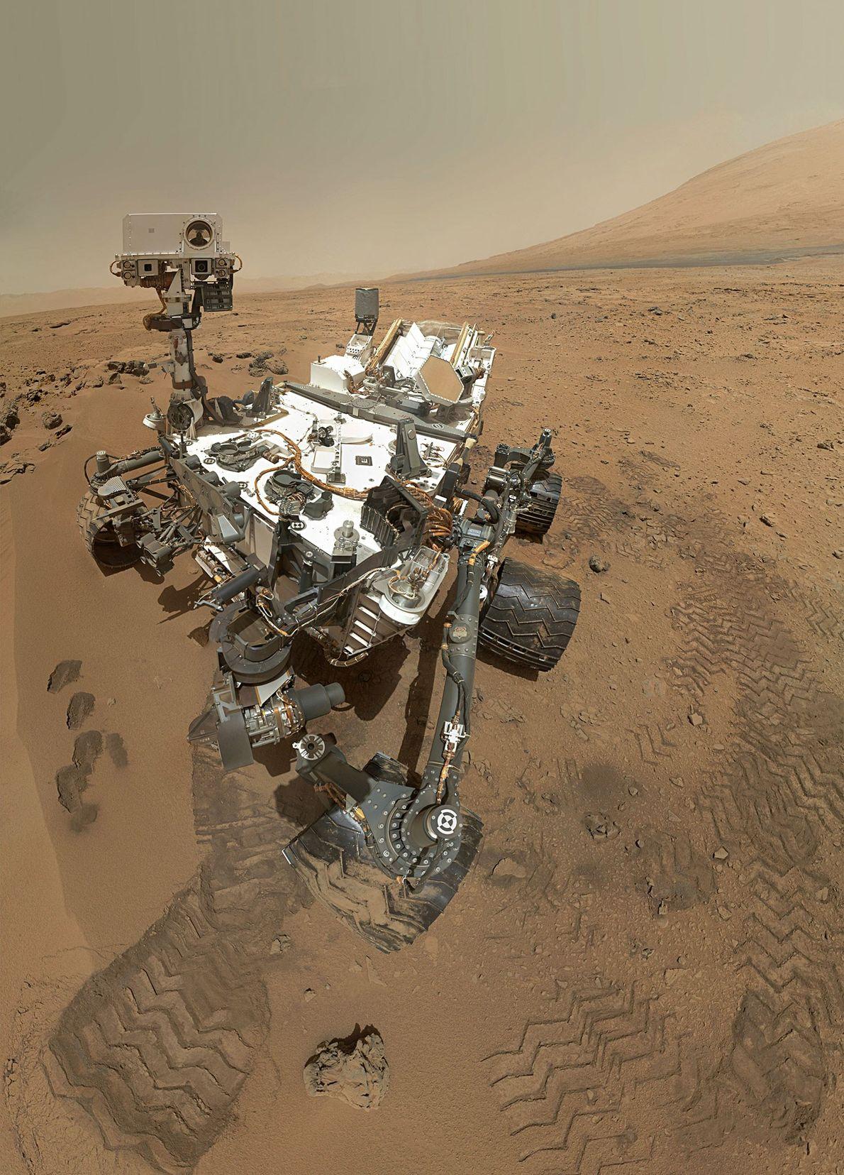 Selfie martien