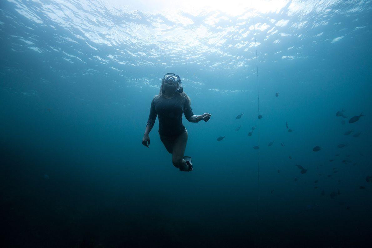 """Un plongeur remonte à la surface dans la mer de Tasman. """"Pour moi, rien ne représente ..."""