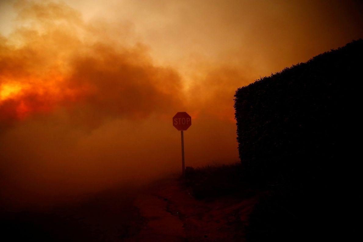 Le feu Woolsey brûle à Malibu, en Californie le 9 novembre.
