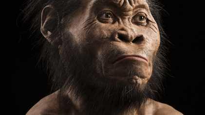 Ce mystérieux homme-singe aurait-il vécu aux côtés des premiers Homo sapiens ?