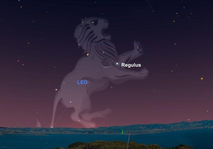 En 1940, des photons de lumière jaillissaient de l'étoile Régulus située au cœur de la constellation ...