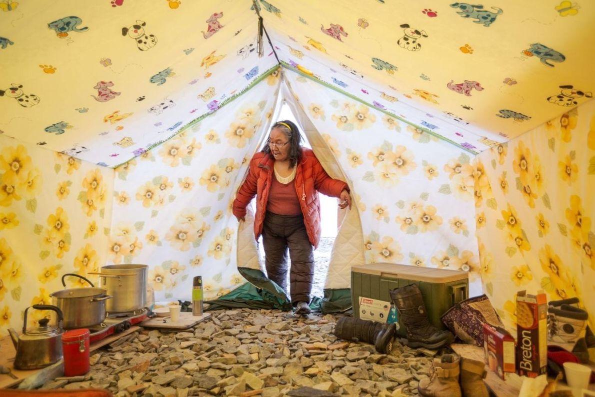 Tootalik Ejangiaq pénètre dans sa tente au camp de printemps annuel où elle aide les plus ...