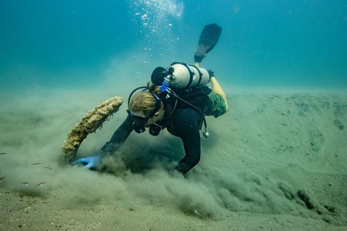 Frederick Hanselmann, co-directeur du projet, utilise un ventilateur pour déplacer le sable qui recouvre l'ancre du ...