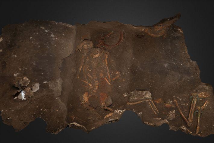 Représentation de deux des trois membres de la famille élitiste découverts par les archéologues.