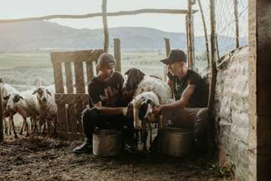 Ani Zekaj et Miri Merkaj traient des brebis près de Kuta. La présence d'un barrage signifierait ...