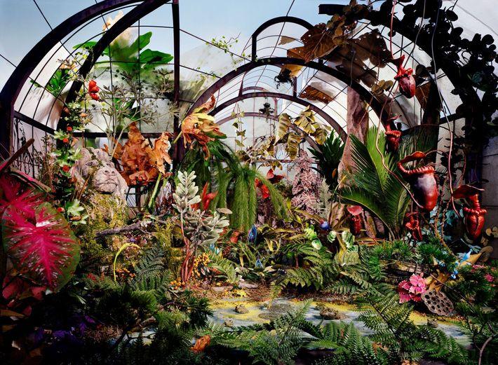 Sans humains dans les parages, ce jardin botanique retrouve une certaine liberté. Cette scène a demandé ...