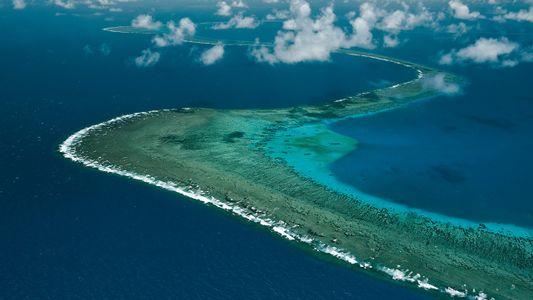 Plongée dans le plus grand récif corallien du monde, en Australie