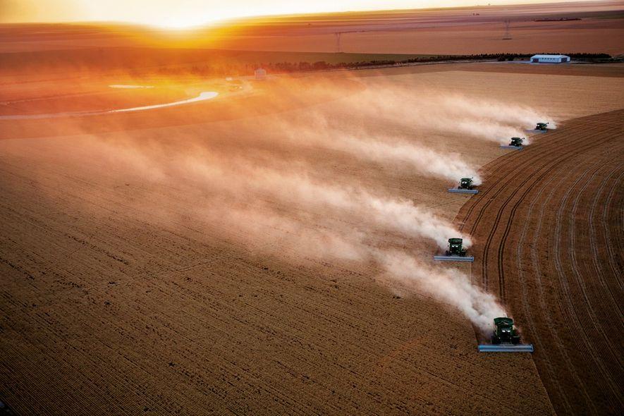 Sur l'exploitation agricole de Vulgamore, dans le Kansas (États-Unis), chaque machine moissonne jusqu'à 10 ha de …