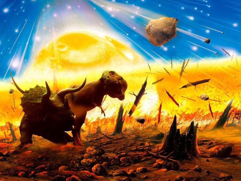 Extinctions de masse : comment la quasi-totalité des espèces a été décimée 5 fois | National Geographic