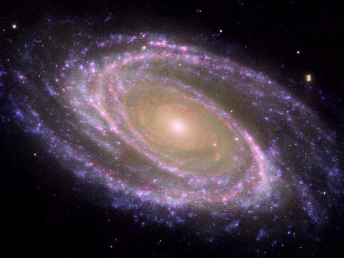 Une image composite de la galaxie Messier 81 (M81) montre ce que les astronomes appellent une ...