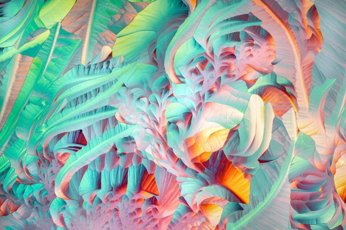 Telle une abstraction des tableaux de Georgia O'Keefe, les cristaux qui se forment après avoir chauffé ...
