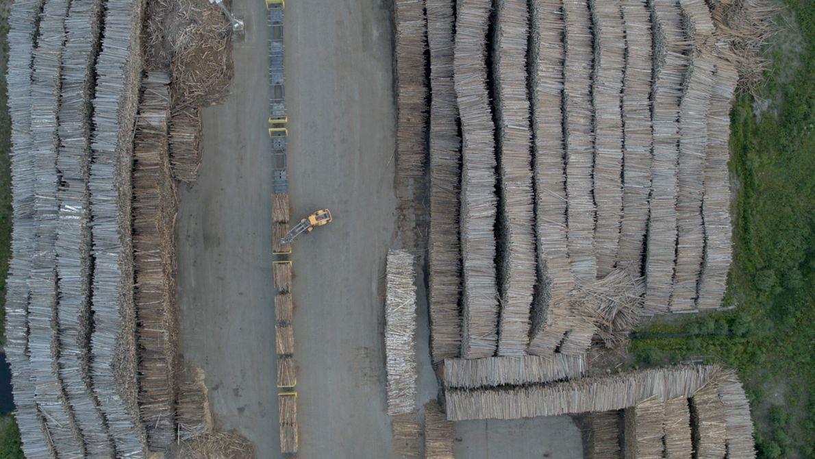 Suède : cette vue d'un parc à bois nous offre une nouvelle perspective. Troisième plus grand exportateur ...