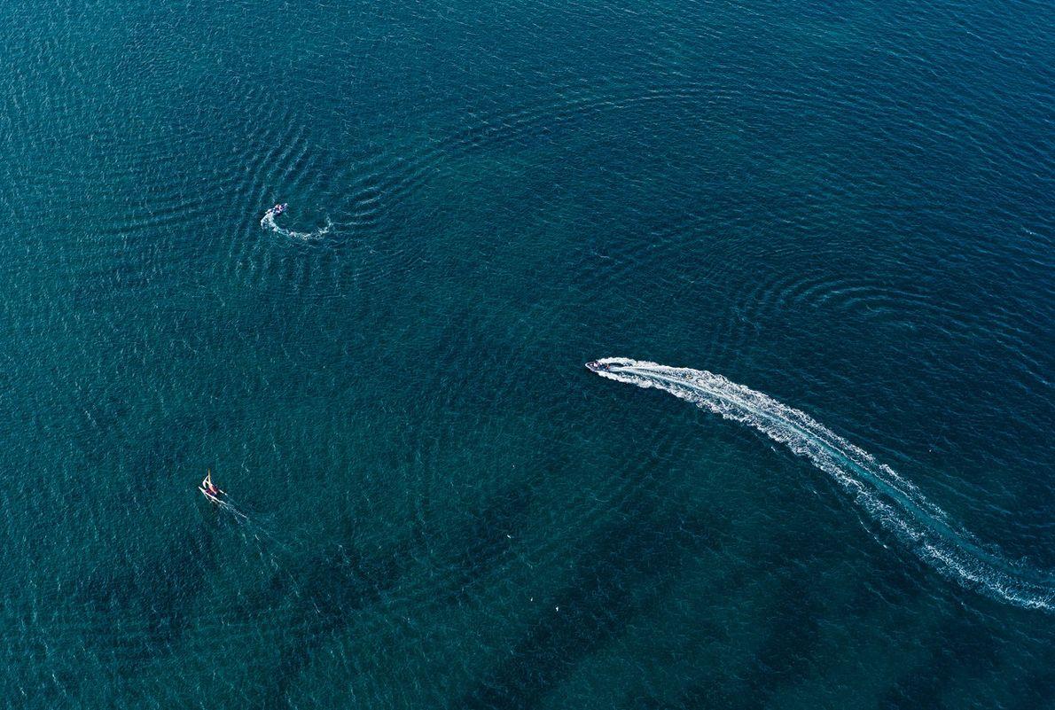 Des éoliennes au milieu des voiliers