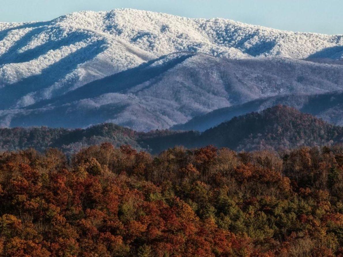 La neige recouvre les sommets du parc tandis que les couleurs de l'automne s'attardent dans la ...