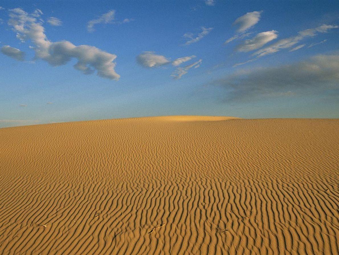 Le Bassin permien s'étend sous l'ouest du Texas et une partie de l'est du Nouveau-Mexique. Il ...
