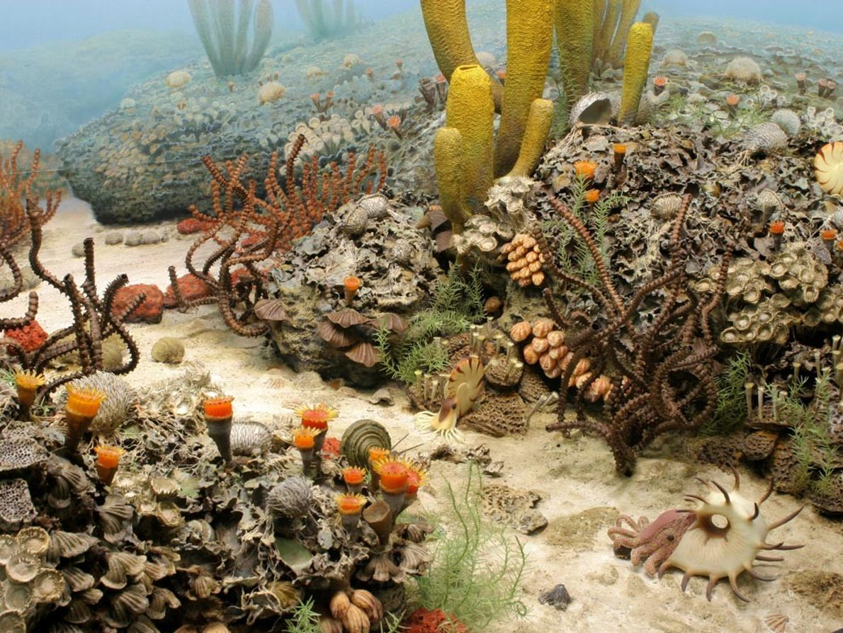 Le Permien est la période à laquelle s'est formé le supercontinent Pangée. Les mers profondes qui ...