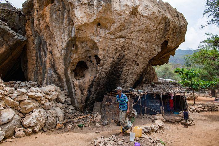 Sur Socotra, les grottes de calcaire sont habitées depuis que les Hommes se sont installés sur ...