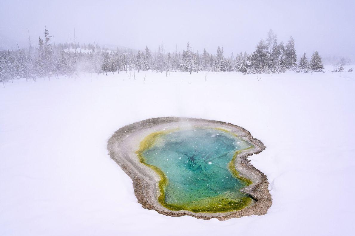 Parc national de Yellowstone, Wyoming