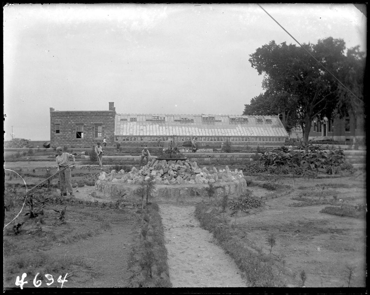 En 1905, Hart Island abritait une maison de correction pour « mauvais garçons. » Sur cette photo de ...