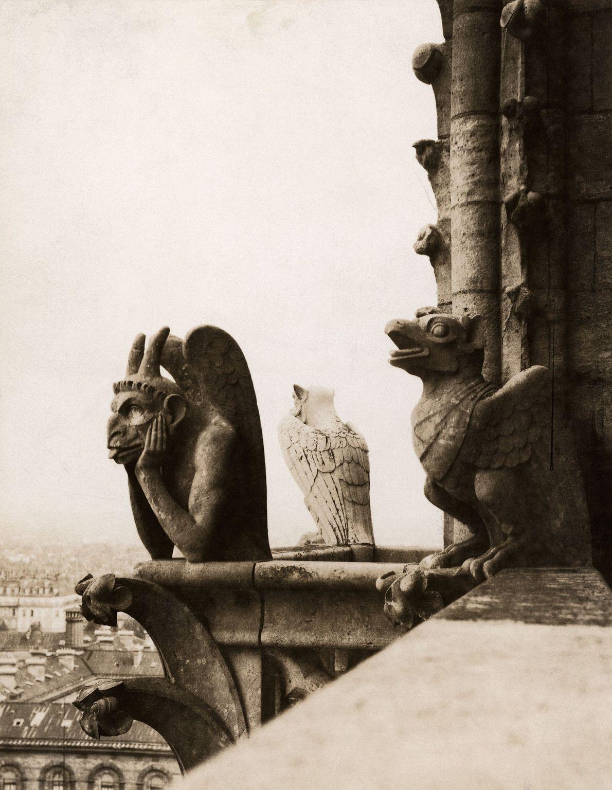 """Une gargouille, Le Stryge, ou """"le vampire"""", est située au sommet de la tour nord de ..."""
