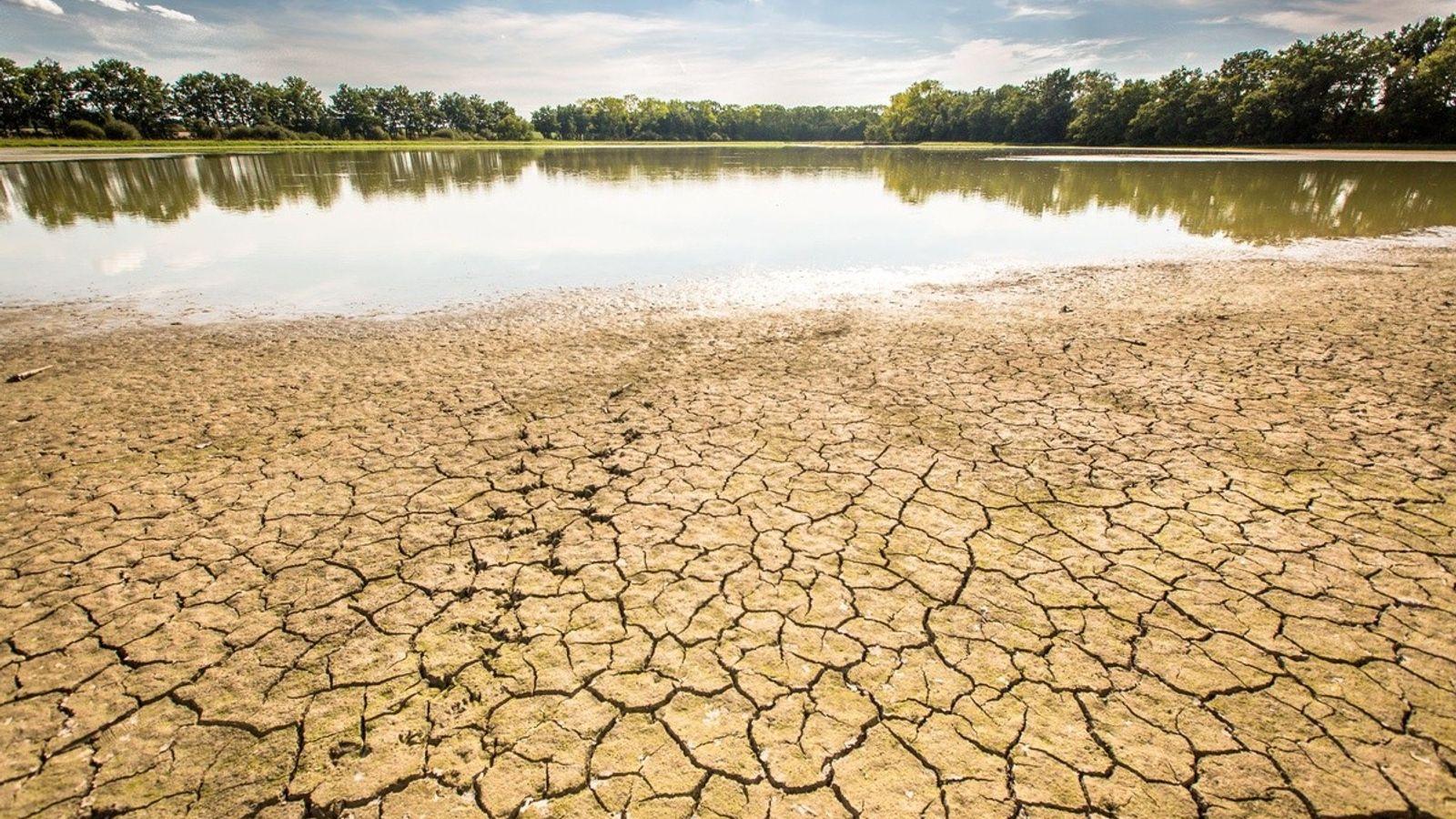 es effets de la sécheresse en France, à Saint-Andre-de-Corcy, au mois d'août 2015.
