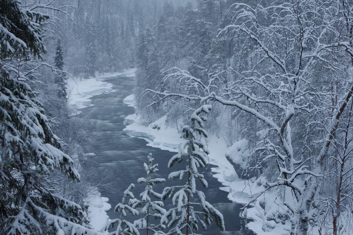 La neige et la glace gèlent cette scène dans le temps.