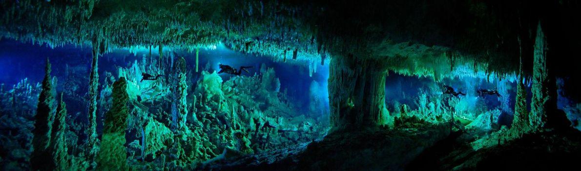 Pour atteindre la Dan's Cave des îles Abaco dans les Bahamas, les plongeurs doivent traverser la ...
